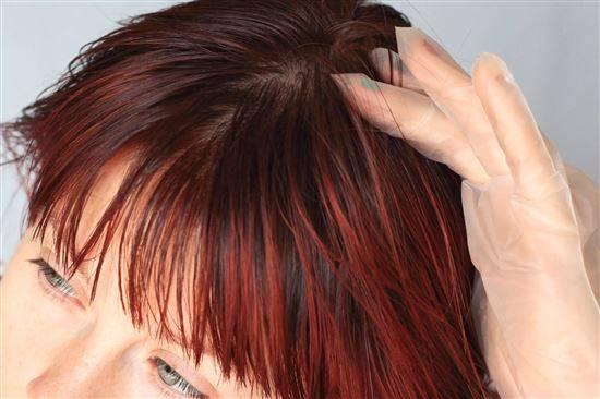 как покрасить волосы в два цвета фото цветок вполне дружелюбен